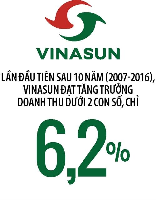 VinaSun đối mặt với khó khăn sau 10 năm tăng trưởng liên tiếp